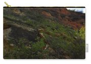 Wyoming Red Rocks Carry-all Pouch