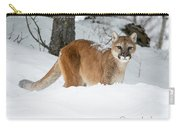 Wyoming Wild Cat Carry-all Pouch