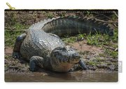 Yacare Caiman On Grassy Beach Eyeing Camera Carry-all Pouch
