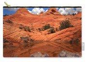Yant Flat Canyon Reflections Carry-all Pouch