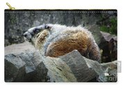 Yellow Bellied Marmot - Glacier National Park Carry-all Pouch