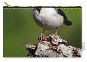 Yellow-billed Cardinal Carry-all Pouch