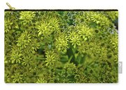 Yellow Blossoms Of Green Aeonium In Huntington Desert Garden In San Marino-california  Carry-all Pouch