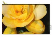 Yellow Crocus Closeup Carry-all Pouch