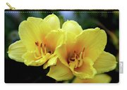 Yellow Daylilly 0204 H_2 Carry-all Pouch