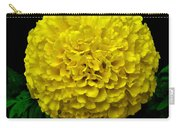 Yellow Marigold Flower On Black Background Carry-all Pouch