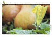 Yellow Pumpkin Flower Closeup Garden Autumn Season Carry-all Pouch