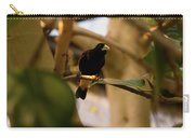 Yellow-rumped Cacique 3 Carry-all Pouch