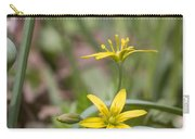 Yellow Star-of-bethlehem Carry-all Pouch