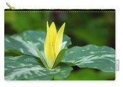Yellow Trillium Flower Trillium Luteum Carry-all Pouch