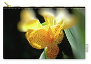Yellow With Red Spots Carry-all Pouch by Douglas Barnard