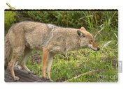 Yellowstone Coyote Scout Carry-all Pouch