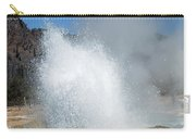 Yellowstone Features  Carry-all Pouch