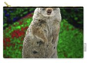 Yellowstone Pica Carry-all Pouch
