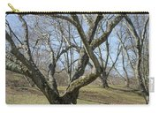 Yellowwood Tree In Winter Carry-all Pouch