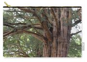 Yew Tree Entrance Carry-all Pouch