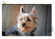 Yorkshire Terrier Dog Pose #3 Carry-all Pouch