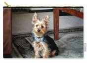 Yorkshire Terrier Dog Pose #6 Carry-all Pouch