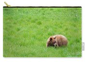 Yosemite Bear Carry-all Pouch