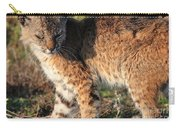 Young Bobcat 01 Carry-all Pouch
