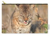 Young Bobcat 02 Carry-all Pouch