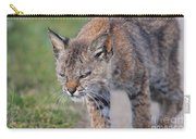 Young Bobcat 03 Carry-all Pouch