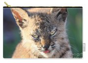 Young Bobcat 04 Carry-all Pouch
