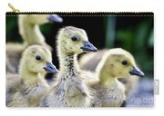 Young Canadian Goose Goslings Carry-all Pouch