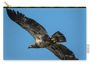 Young Eagle Color Carry-all Pouch
