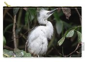 Young Egret Costa Rica Carry-all Pouch