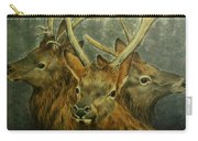 Young Elk Trio- Wapiti Carry-all Pouch