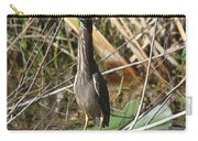 Young Green Heron  Carry-all Pouch