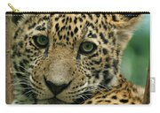 Young Jaguar Carry-all Pouch