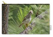 Young Lark Sparrow 3 Carry-all Pouch
