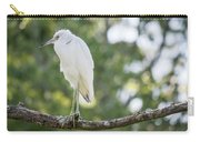 Young Little Blue Heron Carry-all Pouch