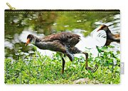 Young Moorhen Carry-all Pouch