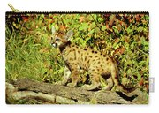 Young Mountain Lion Carry-all Pouch