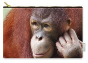 Young Orang Utan Looking Thoughtful Carry-all Pouch