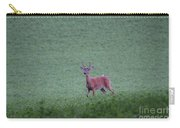 Young Pomfret Summer Buck Carry-all Pouch