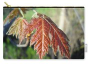 Young Red Maple Leaf In May Carry-all Pouch