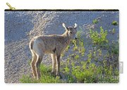 Young Rocky Mountain Bighorn Sheep Carry-all Pouch