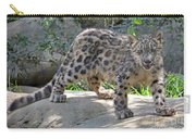 Young Snow Leopard Carry-all Pouch