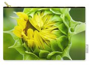 Young Sunflower Carry-all Pouch