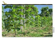 Young Teak Plantation Carry-all Pouch