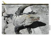 Yucatan Lizard Carry-all Pouch