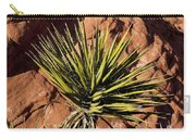 Yucca Five Carry-all Pouch