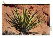 Yucca Two Carry-all Pouch