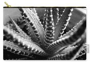 Zebra Cactus Bw Carry-all Pouch