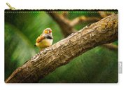 Zebra Finch Male Carry-all Pouch