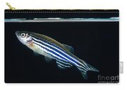 Zebrafish Danio Rerio Carry-all Pouch